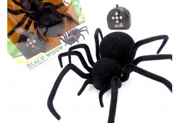 RC pavouk, Černá vdova