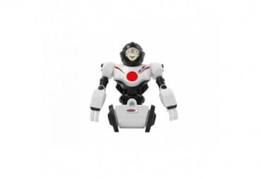 Robot Robibot